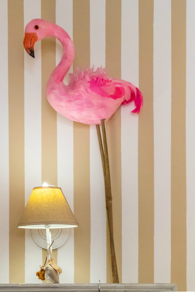 Pink flamingo at My Loft boutique in Pistoia