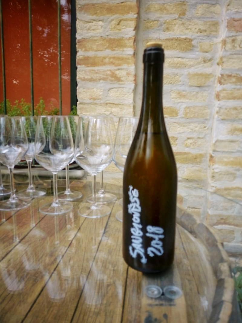 Wine tasting time at Vittorini Winery